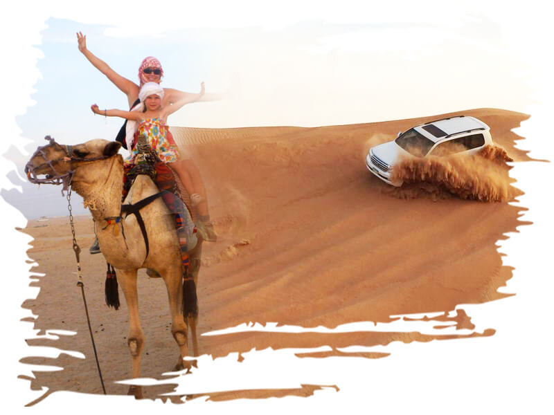 Camel ride and desert safari, camel safari riding tour dubai