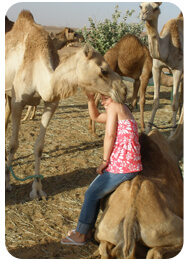 camel-farm-tour-visit-dubai, camel ride tour safari dubai uae