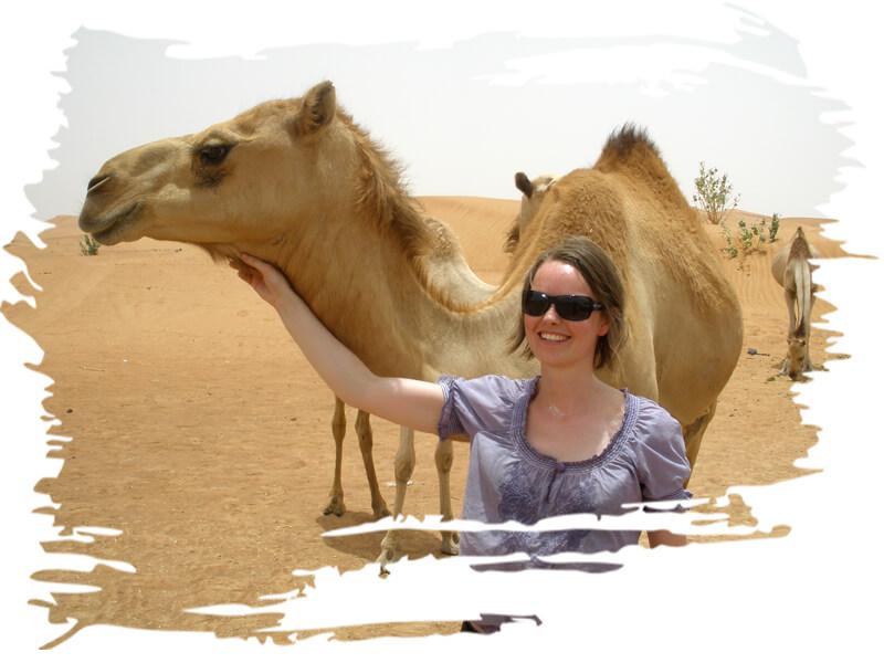 camelsafaritourdubai, camel ride dubai - UAE, dubai camel rides beach, camel trek dubai, camel farm dubai