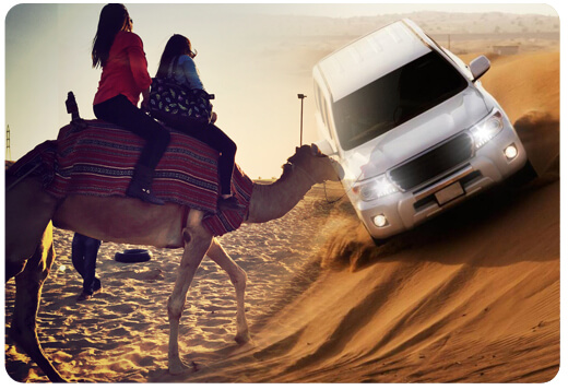 cmael-tour-packages-dubai, camel riding dubai, camel tour safari dubai-002
