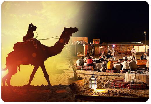 cmael-tour-packages-dubai, camel riding dubai, camel tour safari dubai-003