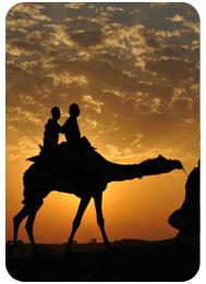 evening-camel-desert-safari-tour-dubai, dubai camel rides prices, heritage camel safari dubai