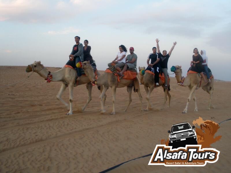 Camel safari Dubai, camel desert safari in Dubai , Sharjah Abu Dhabi